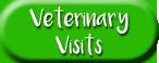 Vet visits button